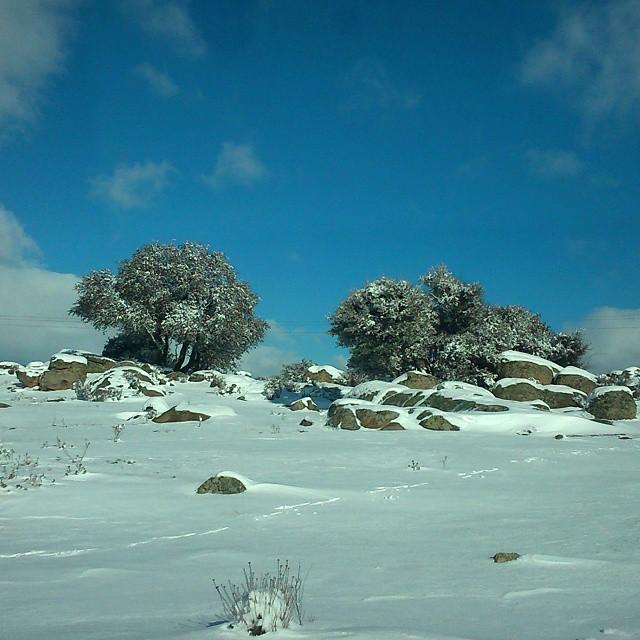 Entrenamientos en nieve